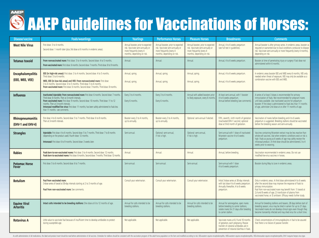 https://aaep.org/guidelines/vaccination-guidelines